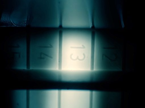 Printempo – album teaser